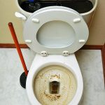 Clogged Toilet.